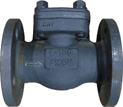 Class 150 Forged Steel Flanged End Piston Check Valve
